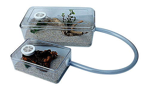 Large Ant Housing & Arena