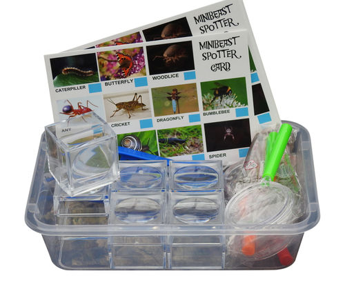 Mini Bug Hunting Set
